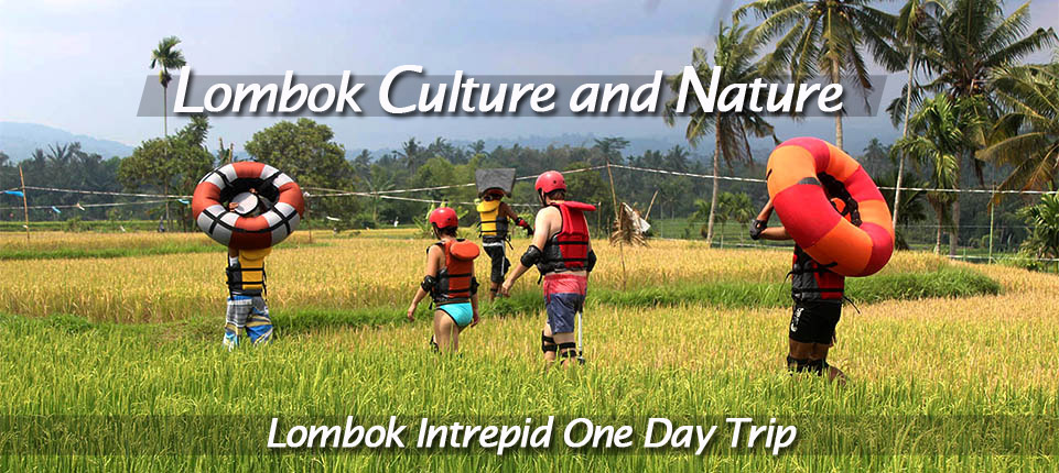 lombok culture and nature